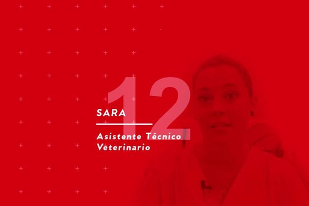 Opinión de Sara Robledo, auxiliar de clínica veterinaria en Implika
