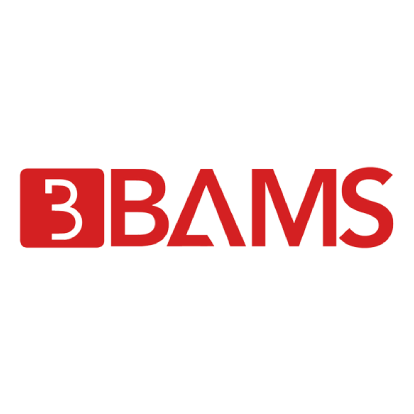 BAM Services