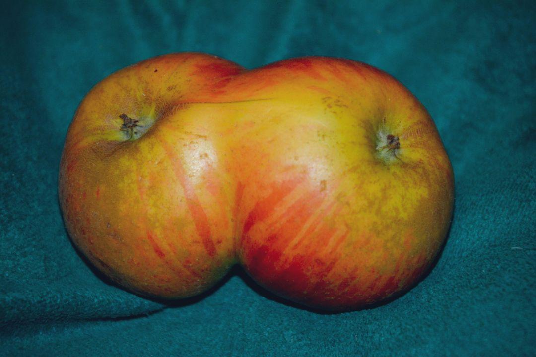 Een appelmutant