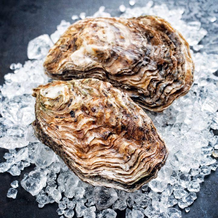 Een bed oesters