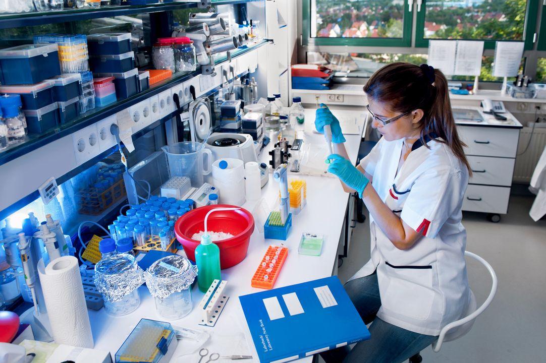 Laboratorium / Laborante