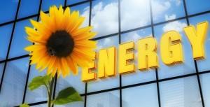 Solution Eco Energie condamnée pour devis irrégulier