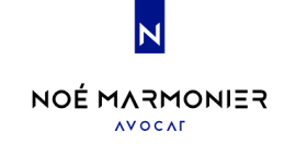 Blog de Noé MARMONIER Avocat