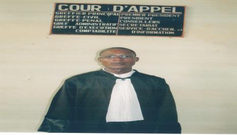 Réflexion sur l'exercice de la profession d'avocat et de défenseur judiciaire en droit congolais
