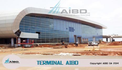 Diagnostic d'un  contrat de partenariat public privé:l'Aéroport international Blaise Diagne de Diass