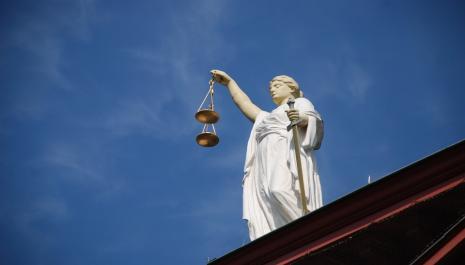 Lutte contre l'abandon d'animaux : nouvelle proposition de loi