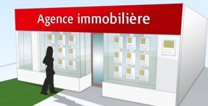 AGENCE IMMO : DEVOIR DE CONSEIL ET D'INFORMATION