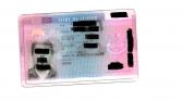 Le titre de séjour visiteur prévu à l'article L313-6 du CESEDA