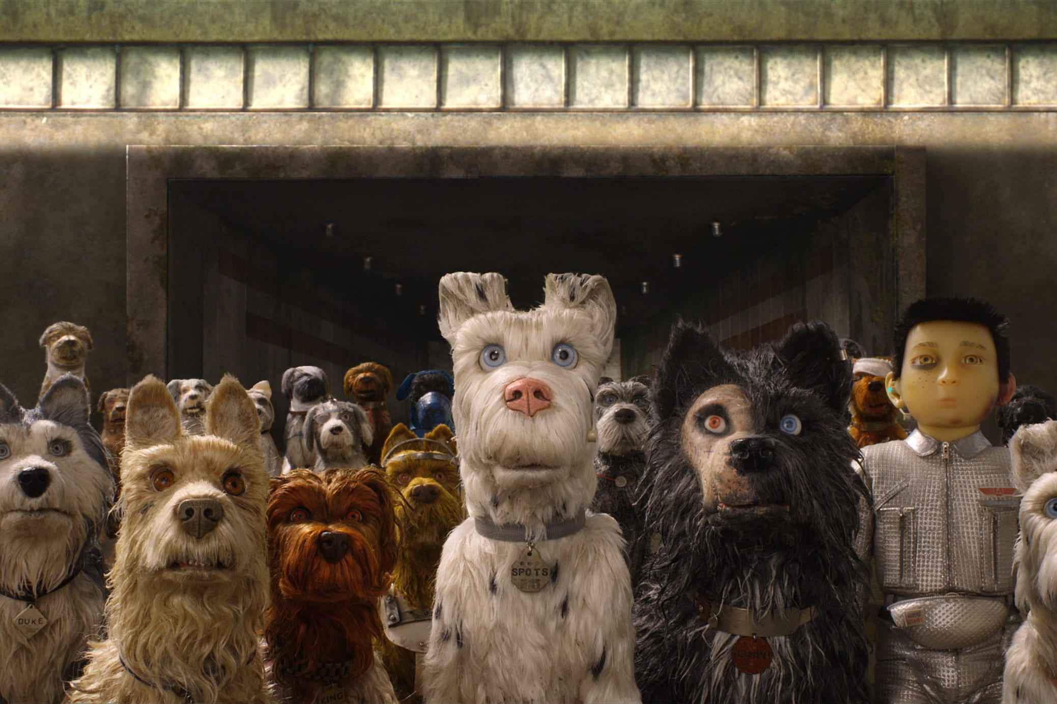 Wes Anderson Ile Aux Chiens Antidote