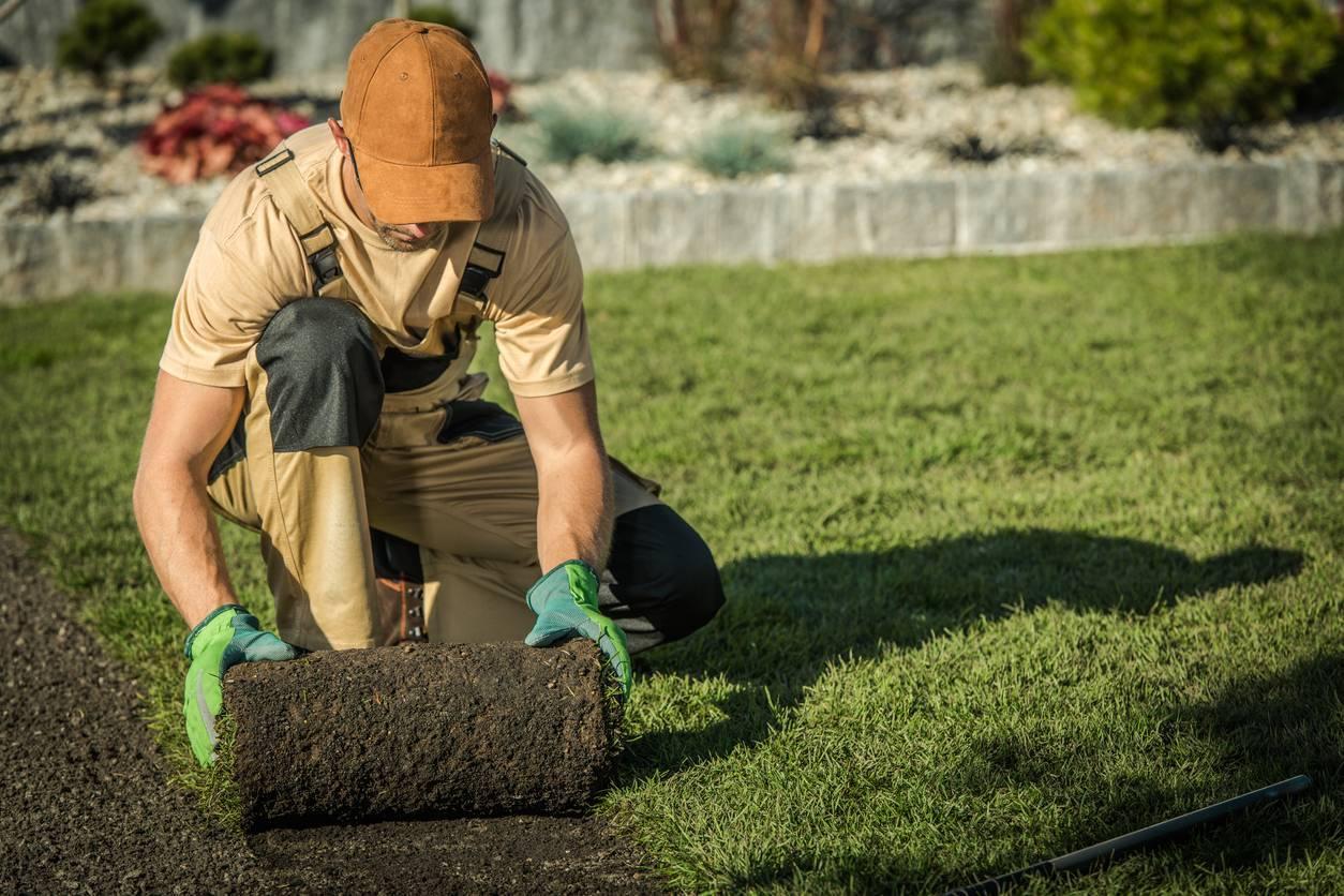 paysagiste professionnel à Toul
