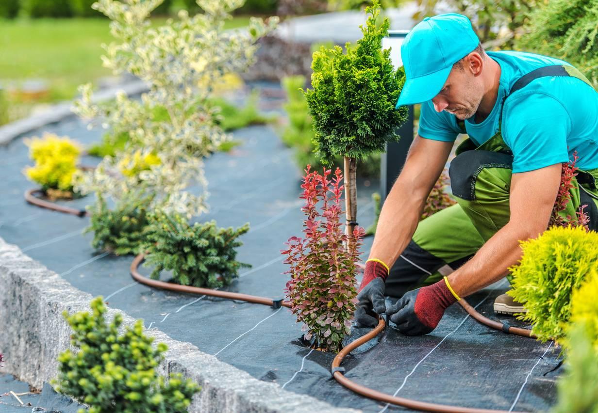 faire appel à un paysagiste professionnel