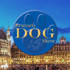 Brussels Dog Show 2019