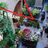 Marché aux Fleurs et Plantes