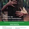 Koh-lanta en forêt (5-15 ans) et  Création ludique à l'argile et jeux forestiers (8-15 ans)