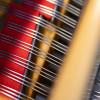 Queen Elisabeth piano competition - PRIZEWINNERS CONCERT