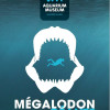Mâchoire Géante de Mégalodon à l'Aquarium-Muséum de liège