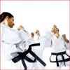 Cours taekwon-do adultes