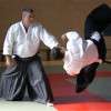 Aikido Teens 11-14j