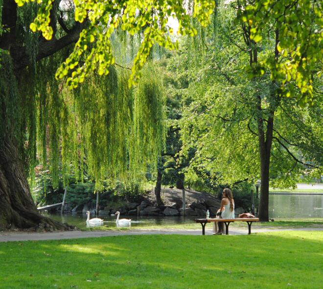 Genieten van de zon in Brusselse parken