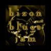 Bizon Blues Jam (Hosted by Dr. Jacques Daniel)