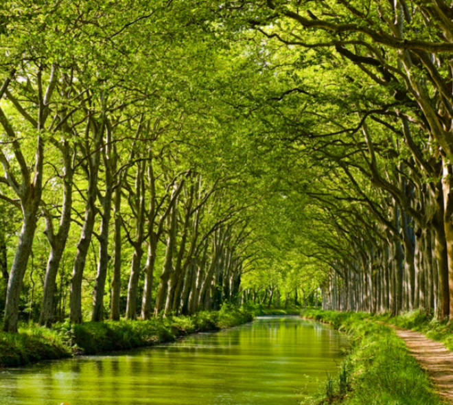 One day  of Canals tourism in Hainaut