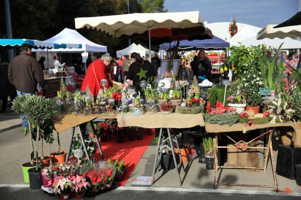 Midi Market