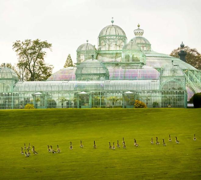 Des photos incroyables des Serres Royales de Laeken