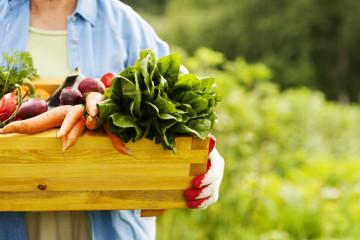 Meer en meer keuzes om in Brussel duurzaam te eten