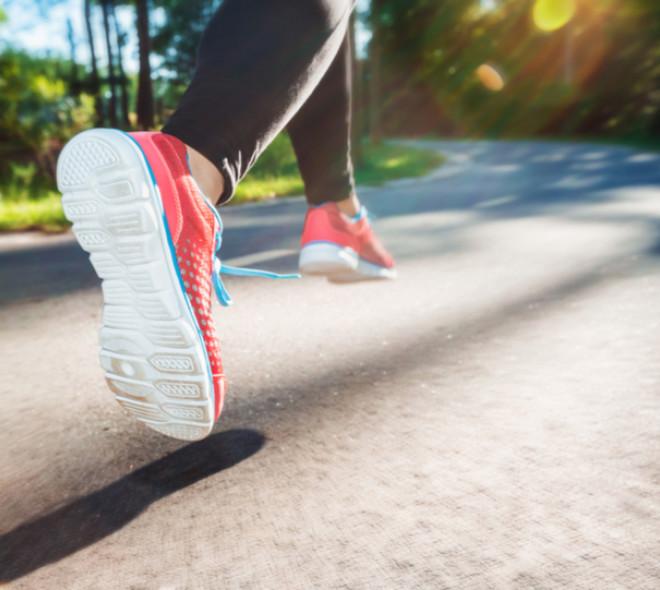 Parcours Jogging 20 Kilomètres Forêt de Soignes