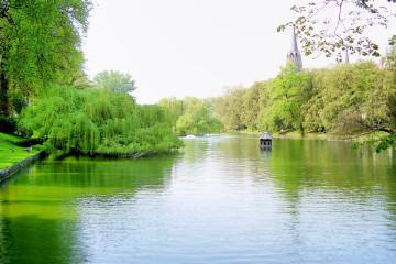 Espaces verts à Bruxelles : les plus beaux endroits pour observer la nature