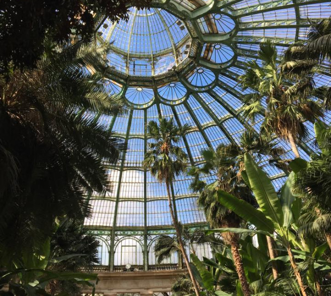 The Royal Greenhouses of Laeken: an architectural and tropical jewel to visit