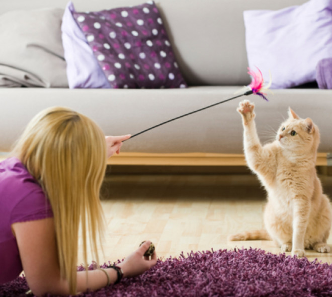 Comment faire garder votre animal de compagnie pendant votre absence ?
