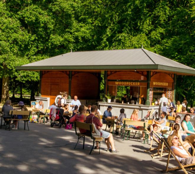 Les activités dans les parcs bruxellois