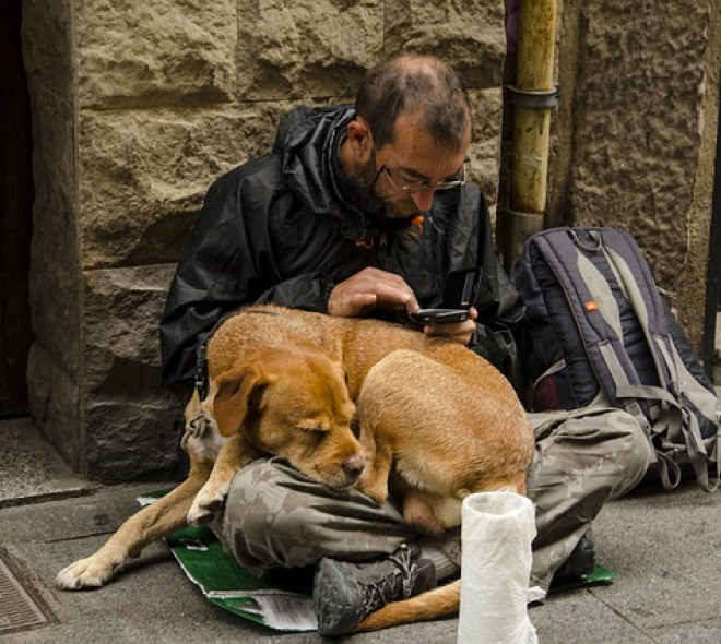 5 projets d'habitat modulable récompensés pour lutter contre le sans-abrisme à Bruxelles