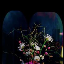 Flower @ttitude
