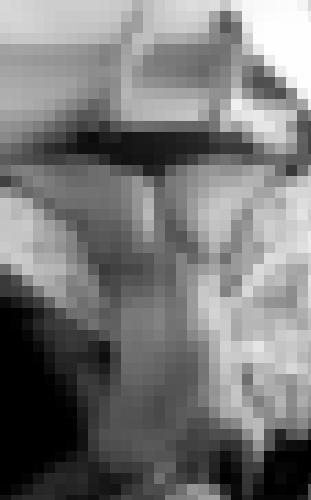Photo de lisou dans En levrette