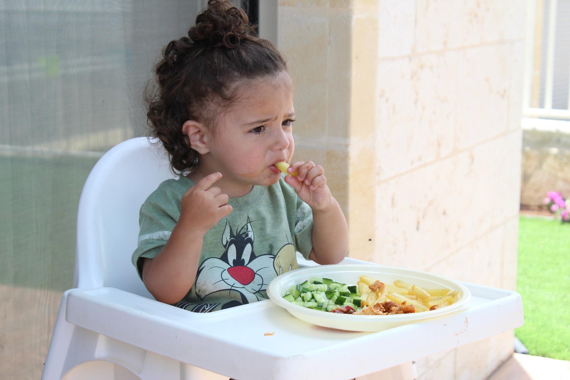 Plats_approuvés_par_les_enfants_:_Rendre_l_heure_du_repas_amusant