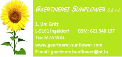 Gaertnerei Sunflower s.à r.l. logo