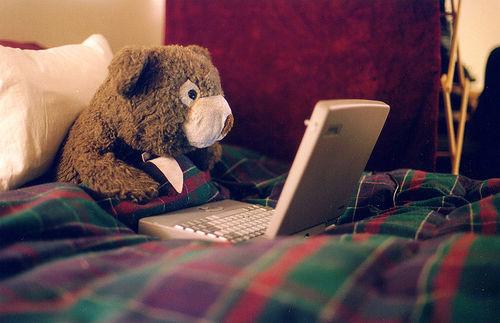 blogging-bear-1