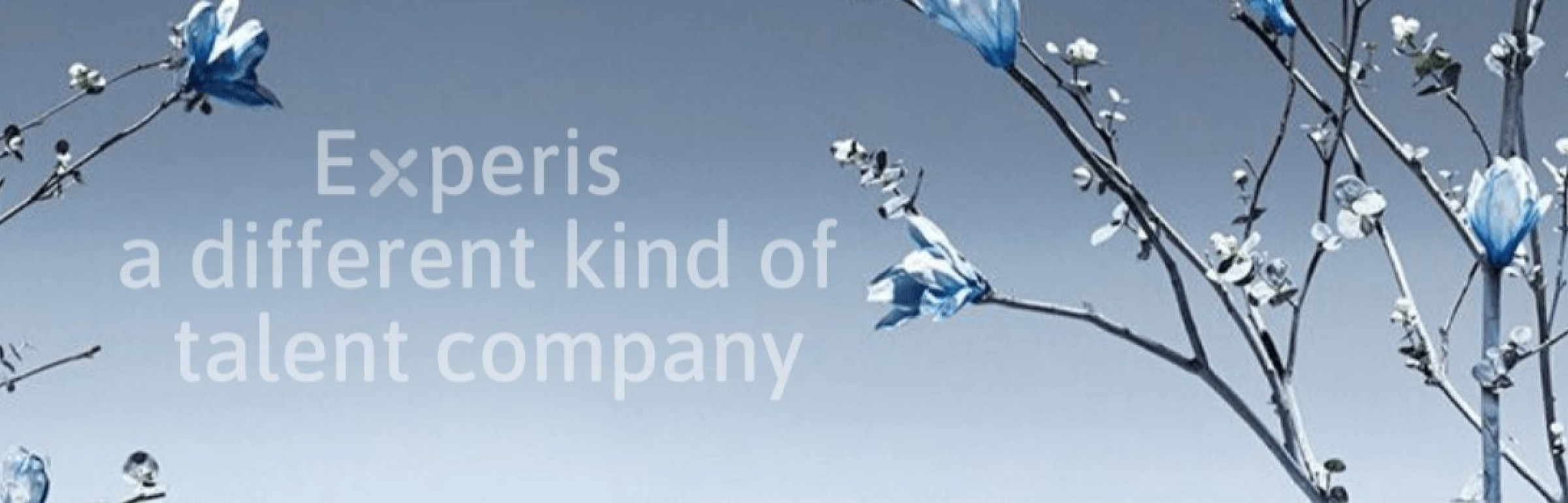 Banner Experis Luxembourg