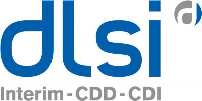 DLSI logo