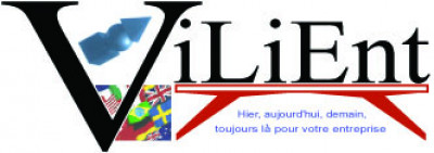 Logo Vilient Consulting S.A