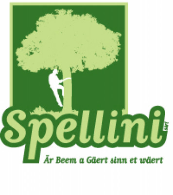 Logo Spellini Sarl