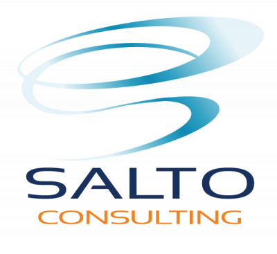 Logo SALTO Consulting