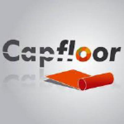 Cap Floor logo