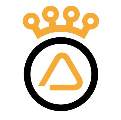 DELTA PNEUS SA logo