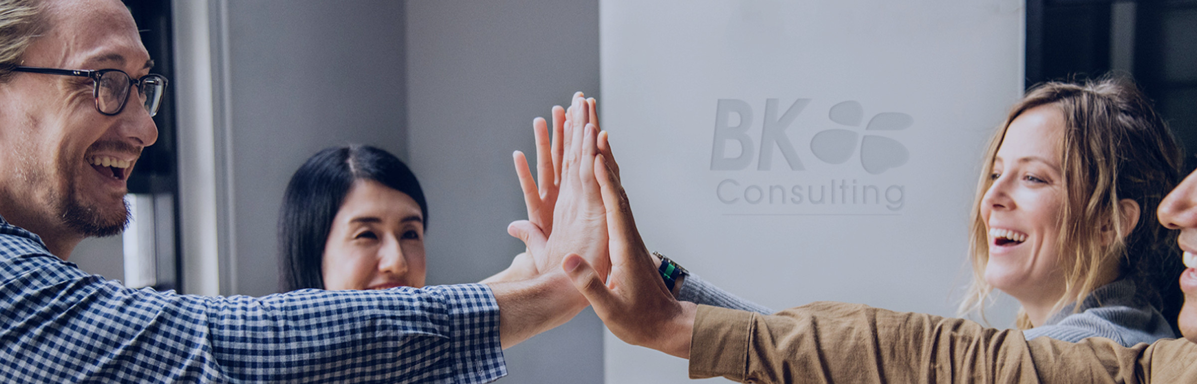 Banner BK CONSULTING