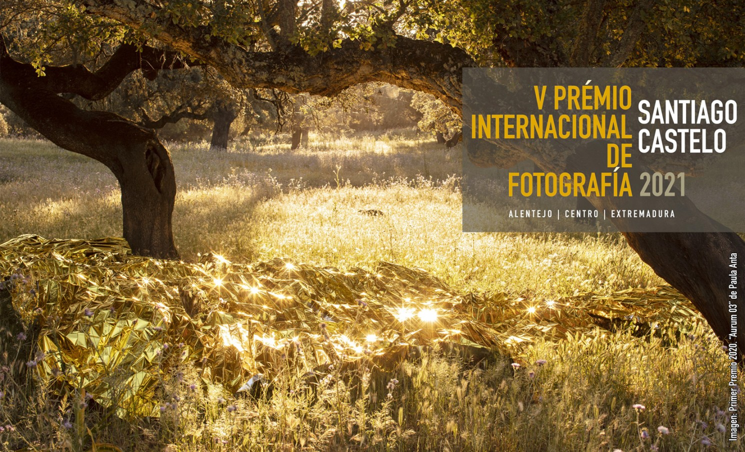 """V PREMIO INTERNACIONAL DE FOTOGRAFIA """" SANTIAGO CASTELO"""""""