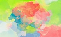 PROGRAMA ARTE JOVEN: JÓVENES ARTISTAS EN CASTILLA Y LEÓN - ARTES PLÁSTICAS Y VISUALES