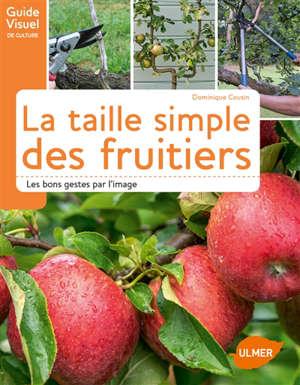 La taille simple des fruitiers : les bons gestes par l'image
